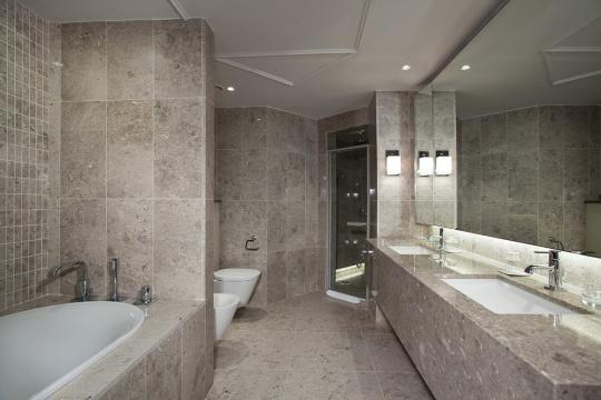 Diplomatski apartman - kupatilo; foto: